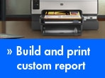 Build and print custom report