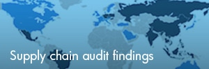Supply chain audit findings