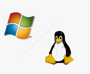 Windows or Linux Workstation