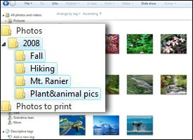 Digital photo folders on a PC's desktop