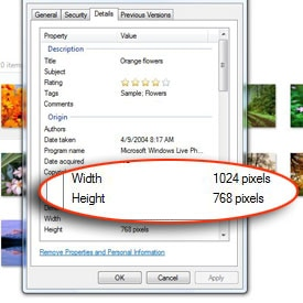 Close-up of the Properties option in the Preview photo dialog box