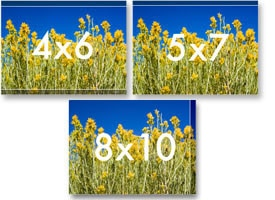 Photo illustration of standard photo aspect ratios compared to digital
