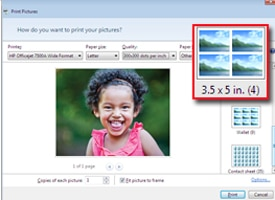 3.5 x 5 photos option highlighted in Windows Live Photo Gallery