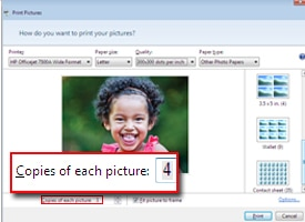 Copies of each picture option highlighted in Windows Live Photo Gallery