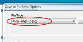 Screen shot of Jpeg File Type option.