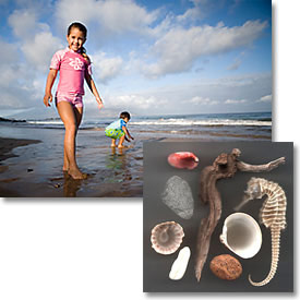 Photo of a girl on the beach next to a picture of shells.