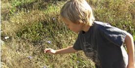 Picture of child exploring nature
