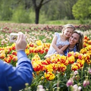 How to take better photos - HP Digital Photography Center