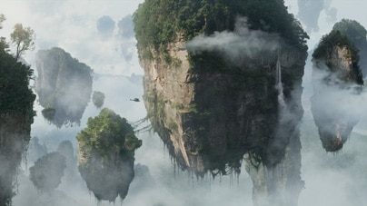Scene from the movie Avatar
