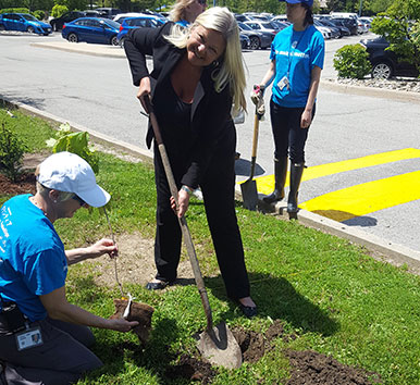 Mary Ann Yule, President & CEO of HP Canada plants a tree at the Mississauga office