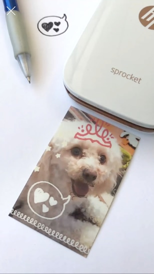 HP Sprocket app - scan printed photos to relive moments
