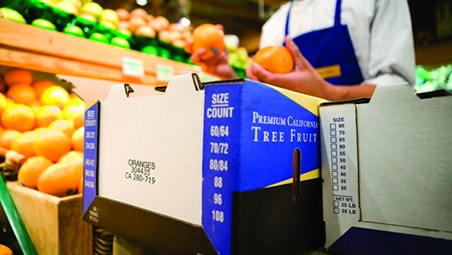 Food packaging safety and environmental attributes
