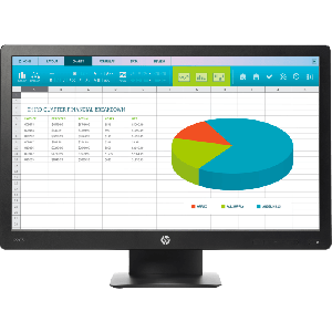 HP ProDisplay P203 20-inch Monitor