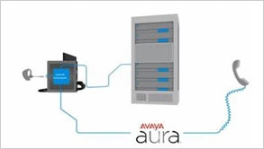 Thin Client Solutions: Avaya Unified Communications Video