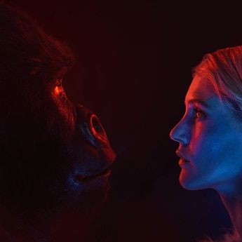 Women face to face with gorilla